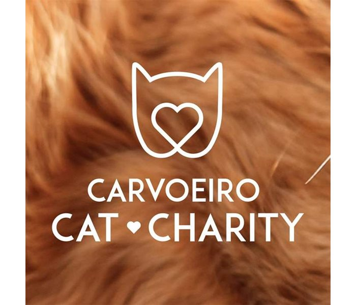 Carvoeiro Cat Charity