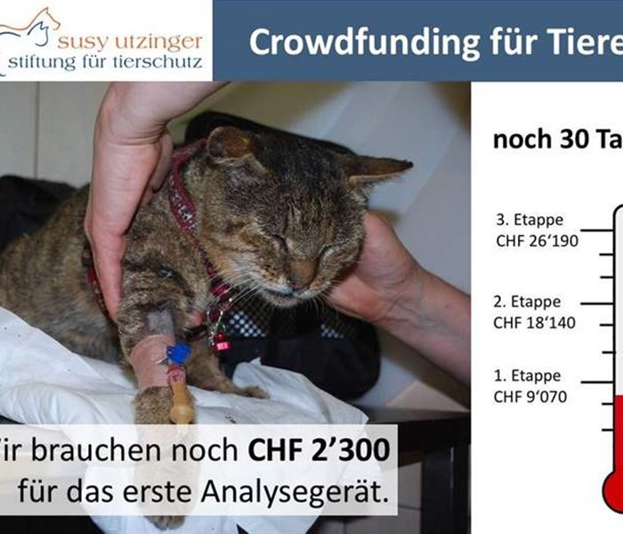 Crowdfunding - Animals need your help!