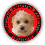 Kutyasziv Allatmento Kozhasznu Alapitvany – Dog Heart Foundation