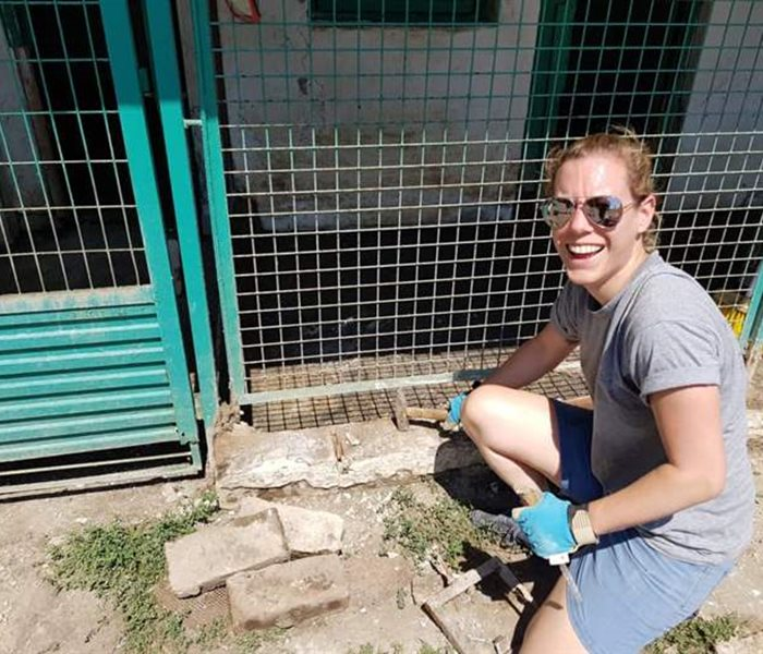 The renovation of the puppy station at the Misina shelter, Hungary, is progressing rapidly.
