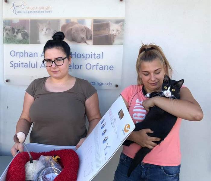 The miracles of the SUST Animal Orphans Hospital Galaţi