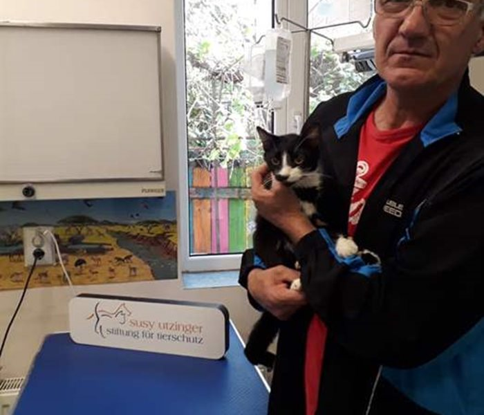 The SUST Animal Orphans Hospital in Bucharest helps elderly animals to spend the last years of their lives as comfortably as possible