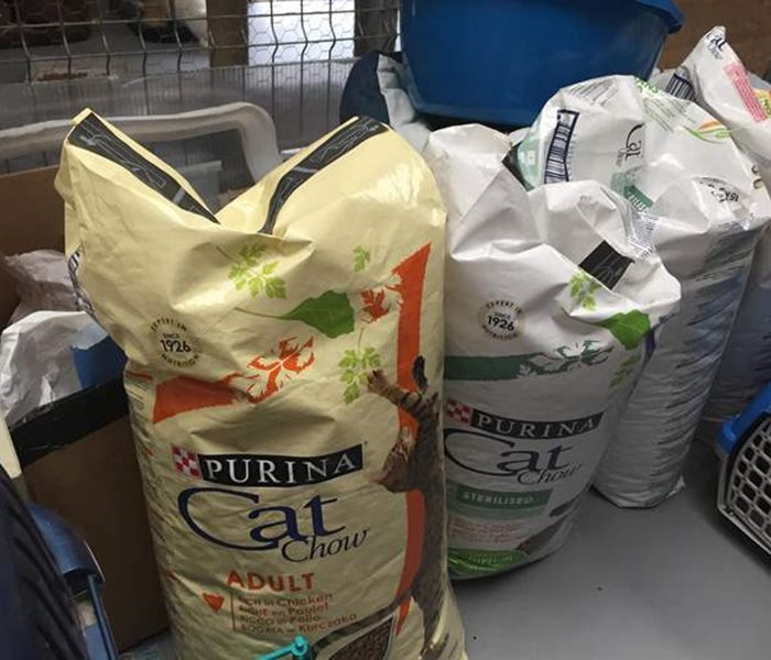 Delivery of food for the cats of the shelter Help Labus