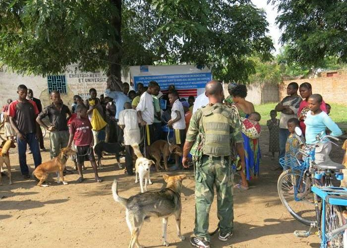 Rabies vaccinations in the Democratic Republic of the Congo